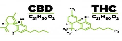 molecules CBD et THC
